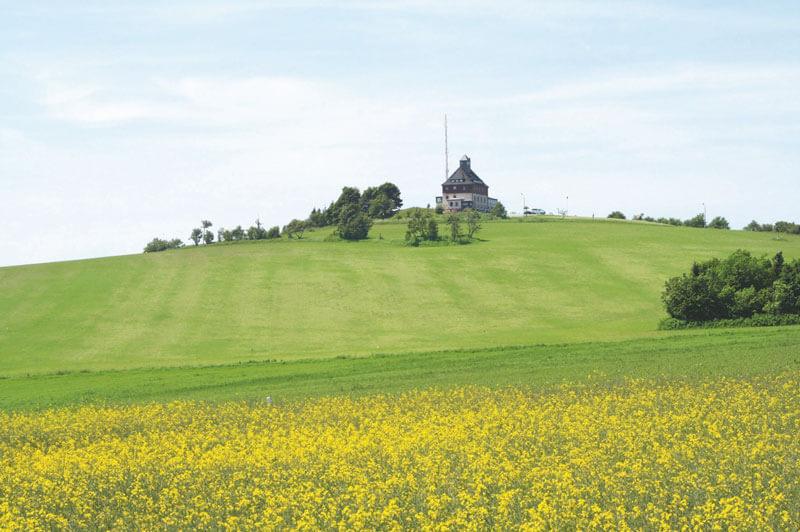 Blick zum Schwartenberg im Sommer