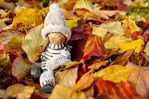 Großes Herbstfest auf dem Schwartenberg