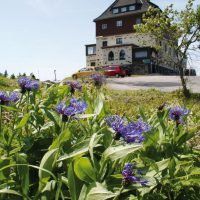 Berggasthaus Schwartenbergbaude im Sommer